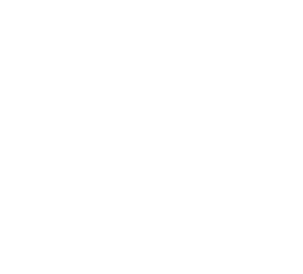 White logo for The Blocks of Roosevelt Row